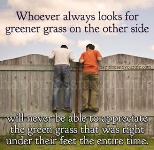 Grass is not always greener