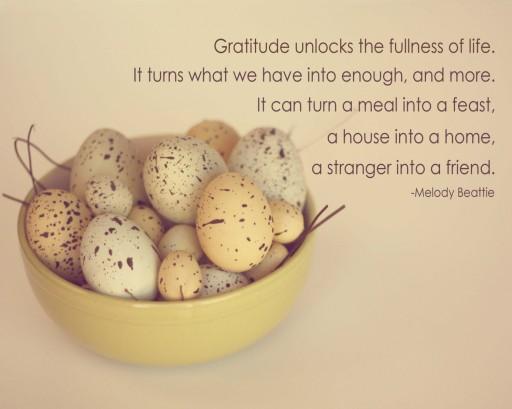 The Spirit of Gratitude