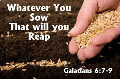 Whatever You Sow, That You Will Reap