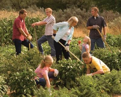 Mormon family gardening