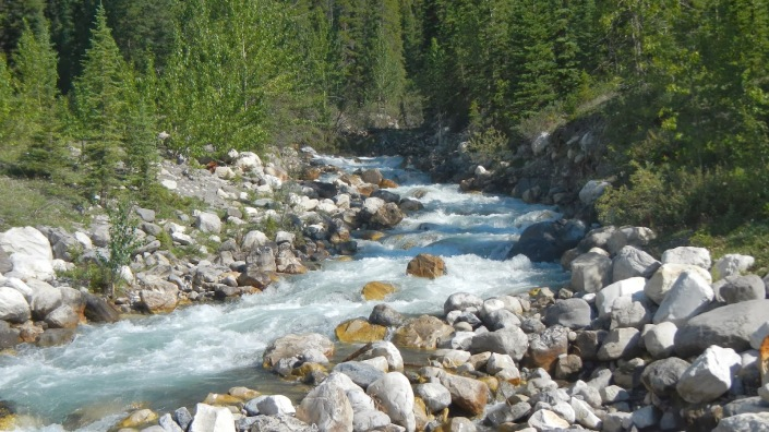 Mountain stream flowing into valley